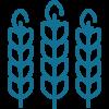 Wheat/Gluten Testing