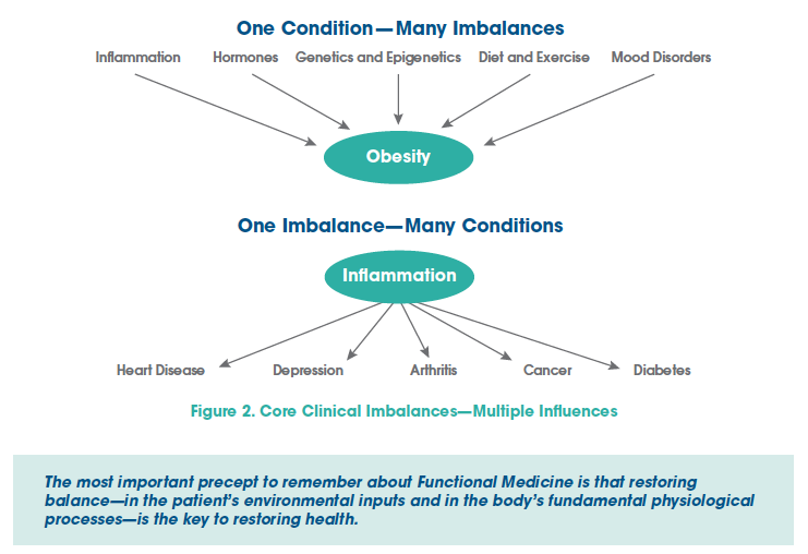 Obesity & Inflamation