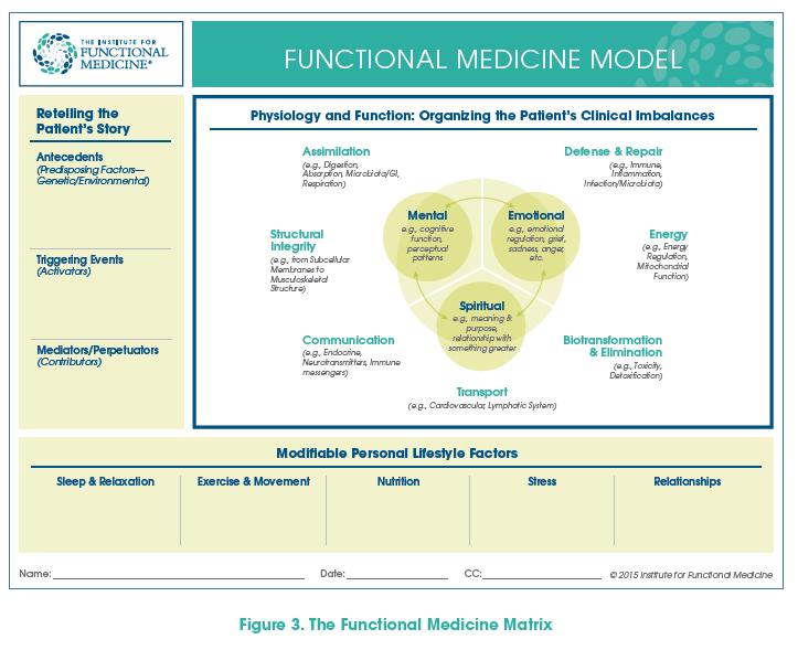 Functional Medicine Model
